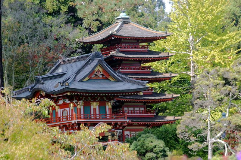 Japanese Tea Garden San Franciso Ca