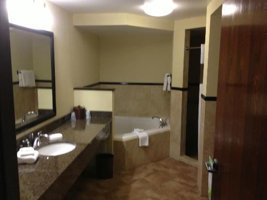 Drury Plaza Hotel San Antonio North