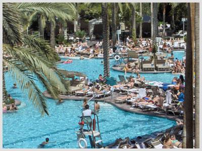 Flamingo Las Vegas Hotel And Casino Culturemixmag Com