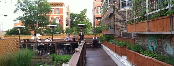 Top 15 Rooftop Restaurants In Chicago